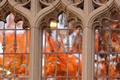 Yale Gothic windows